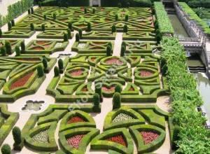 Узоры из самшита в замке Вилландри. Франция. Июль 2009.