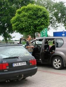 Робиния Умбракулифера на паркинге. Польша. Май 2009.