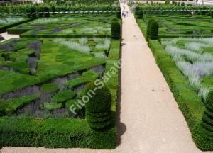 Пряный сад в замке Вилландри. Франция. Июль 2009.